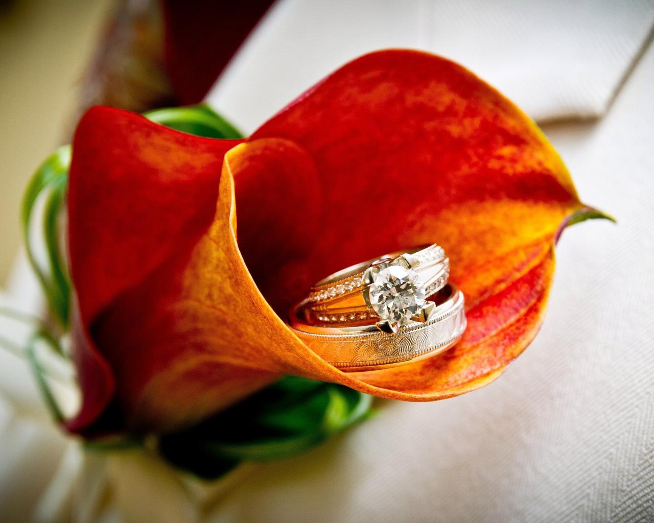 Фото с кольцом на цветах