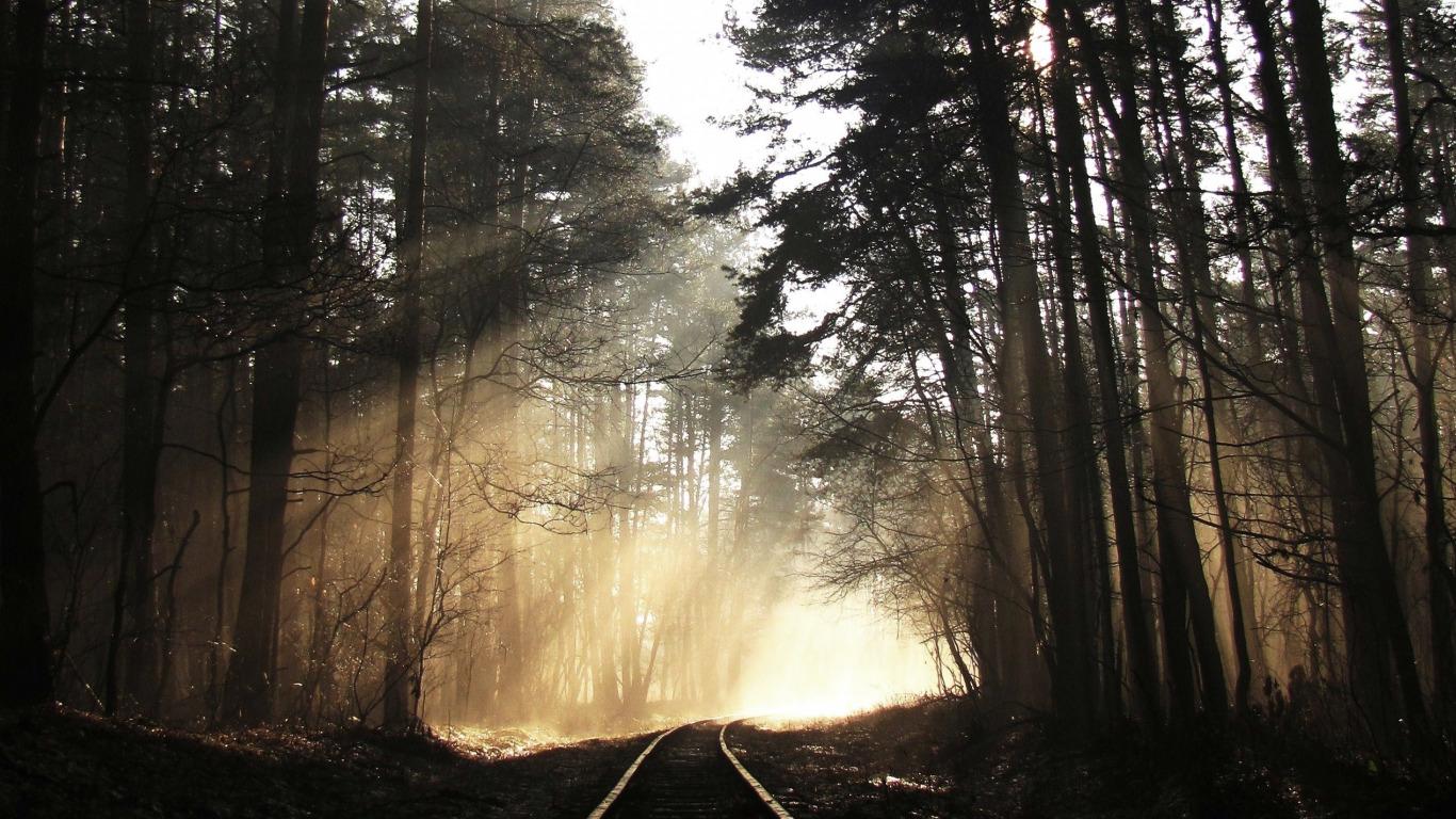 рельсы железная дорога деревья туннель  № 3118452 бесплатно