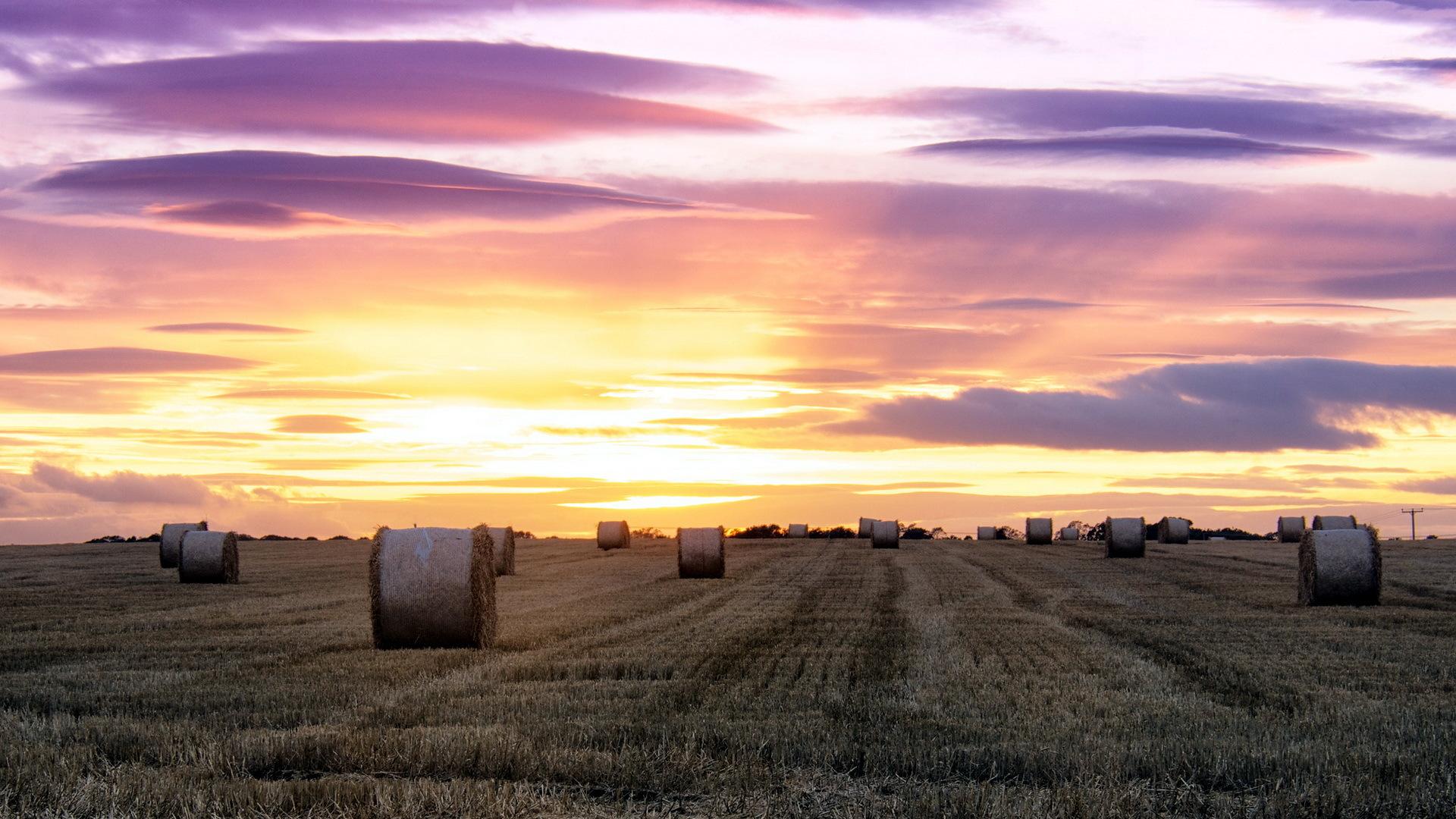 солома поле небо облака straw field the sky clouds  № 1783686 загрузить