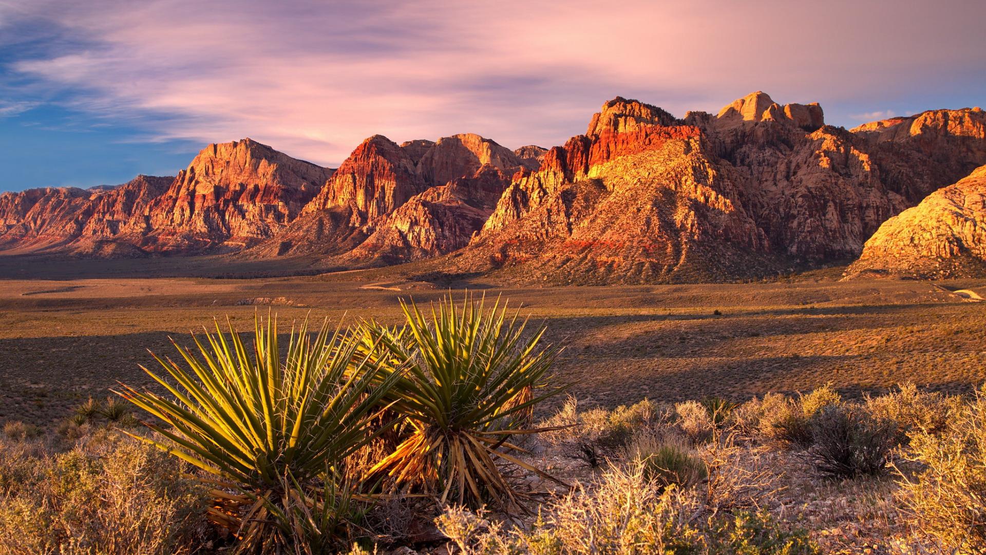 горы песок растительность небо  № 3771011 без смс