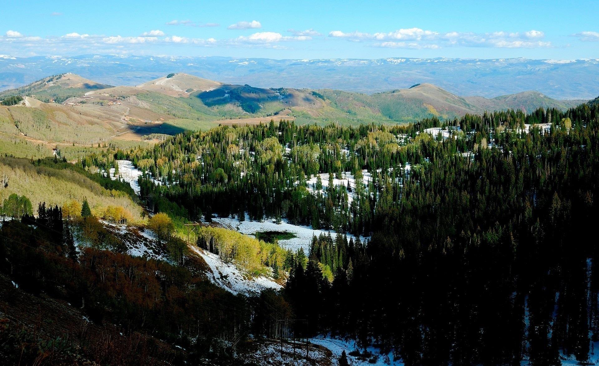 Пейзаж горы лес деревья снег небо