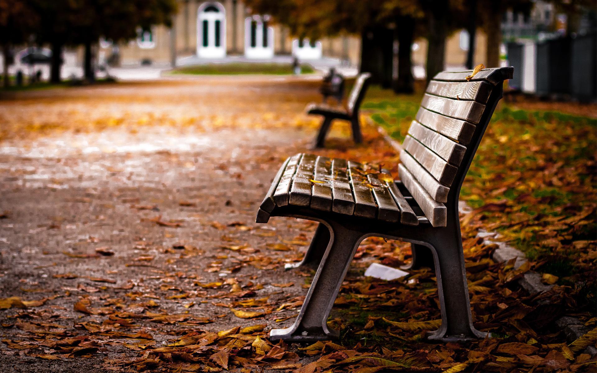 Набережная со скамейками  № 1440196 загрузить