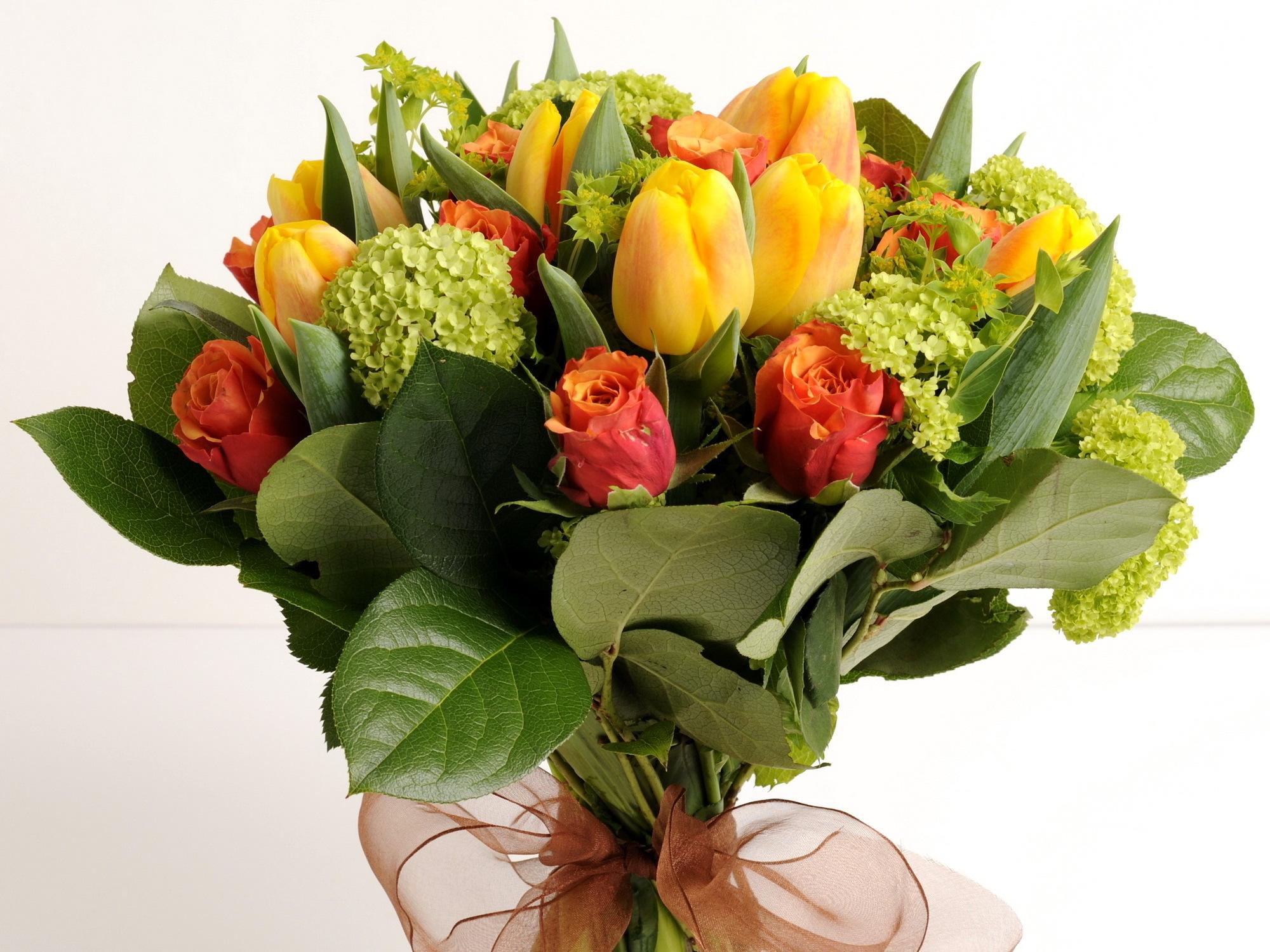 Картинки цветов тюльпанов и роз, соболезнование поводу