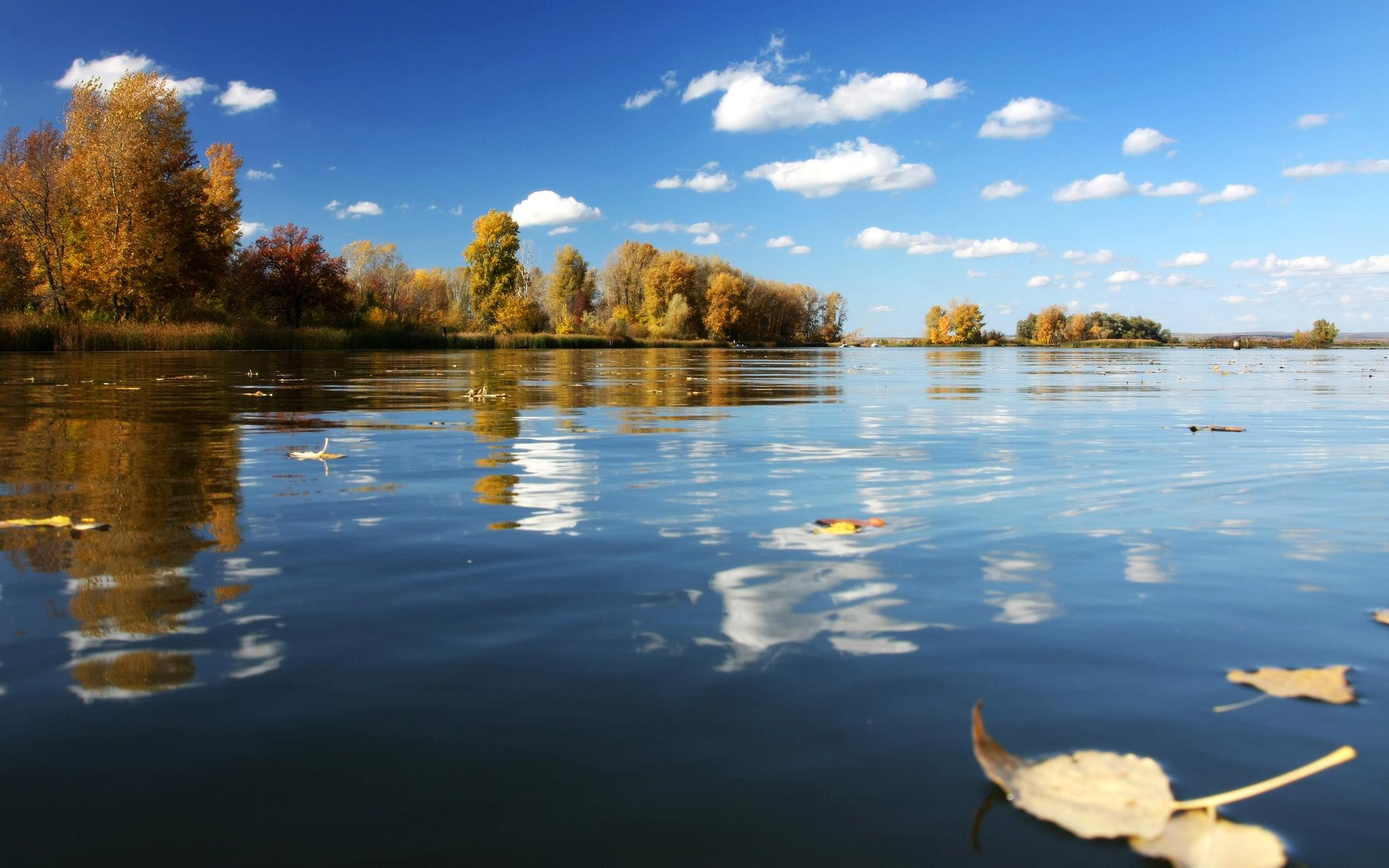 вода озеро осень water the lake autumn  № 1155968  скачать