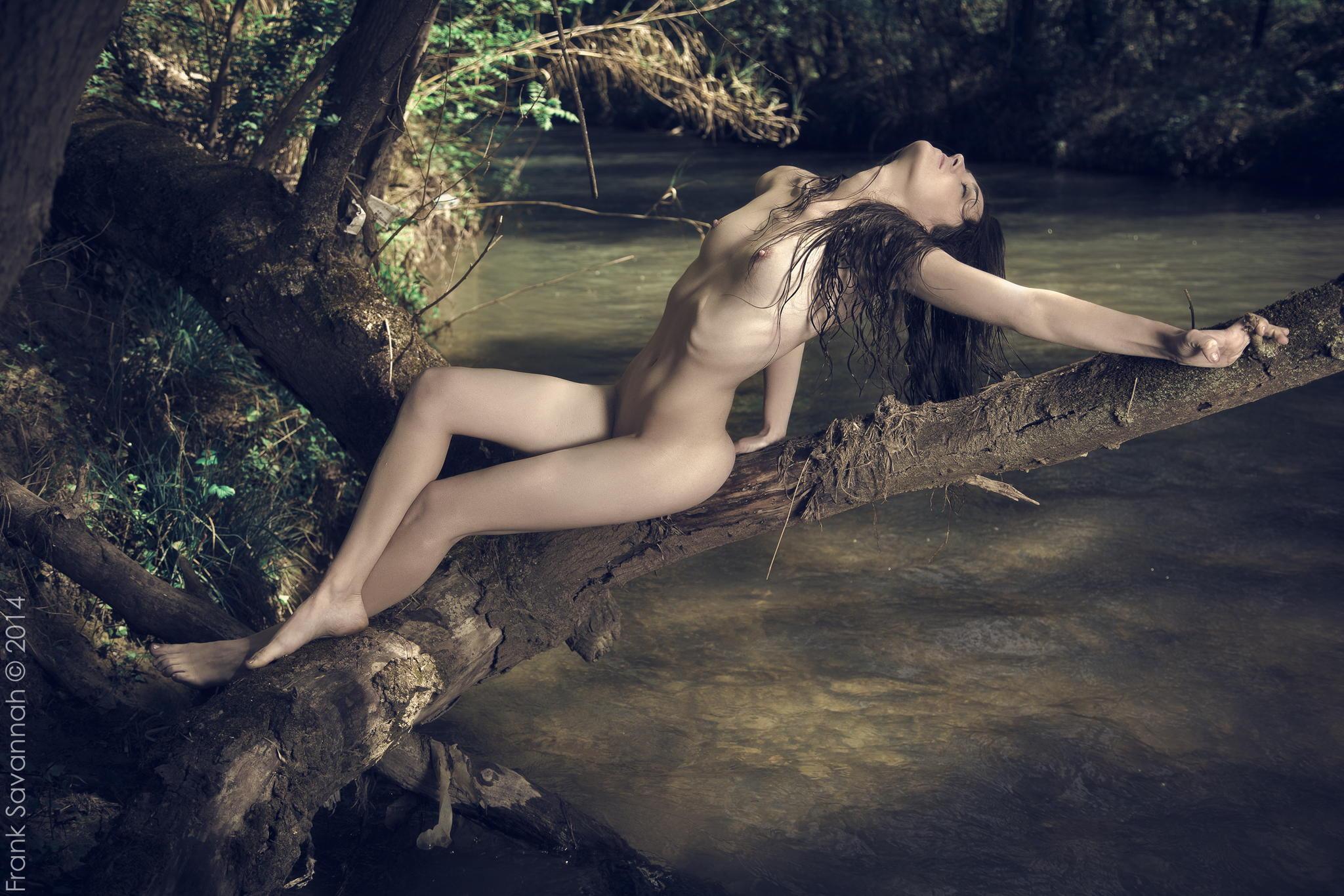 девушка на дереве эротика вылезла