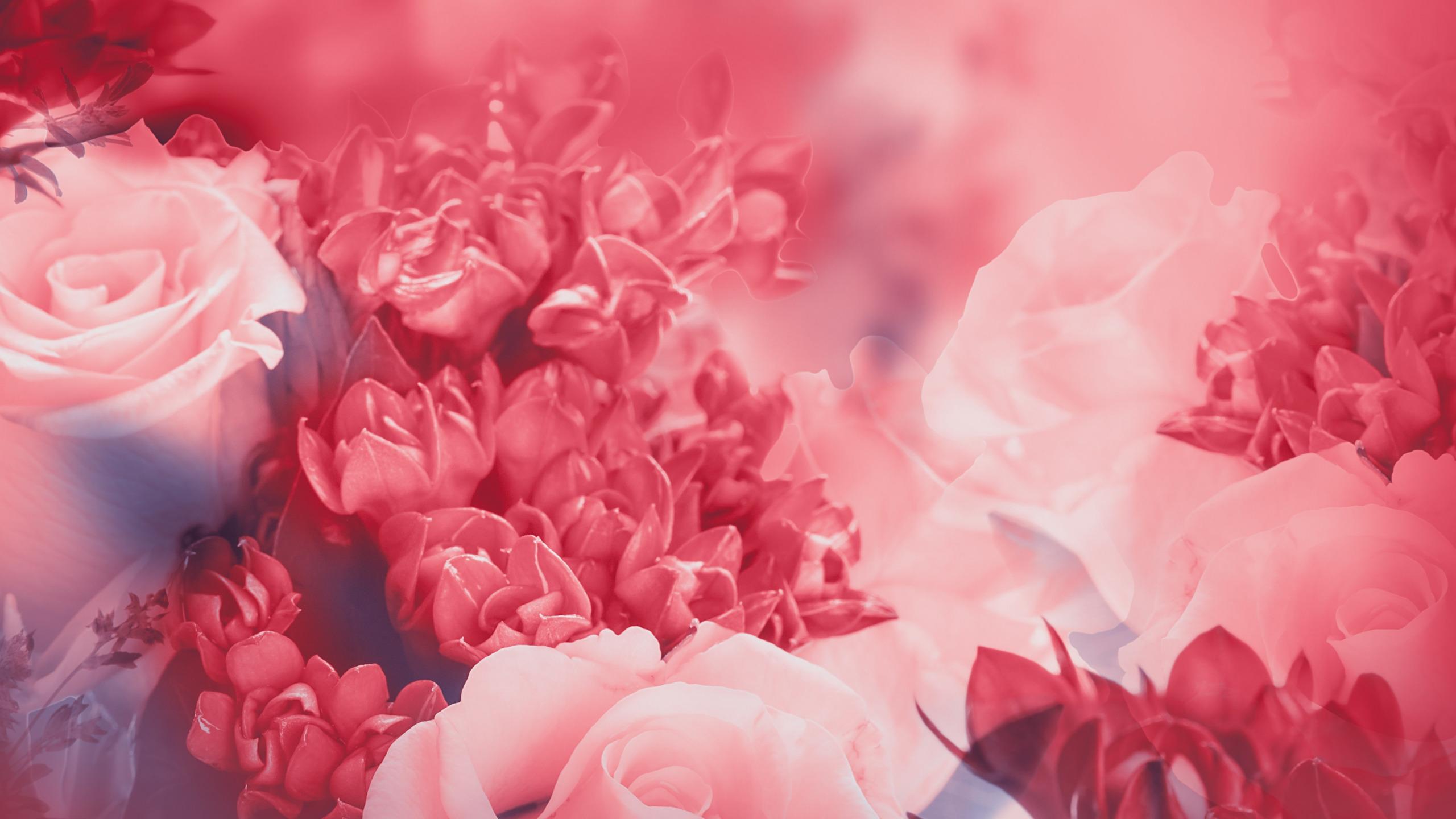 идеально розові заставки на телефон вариант для