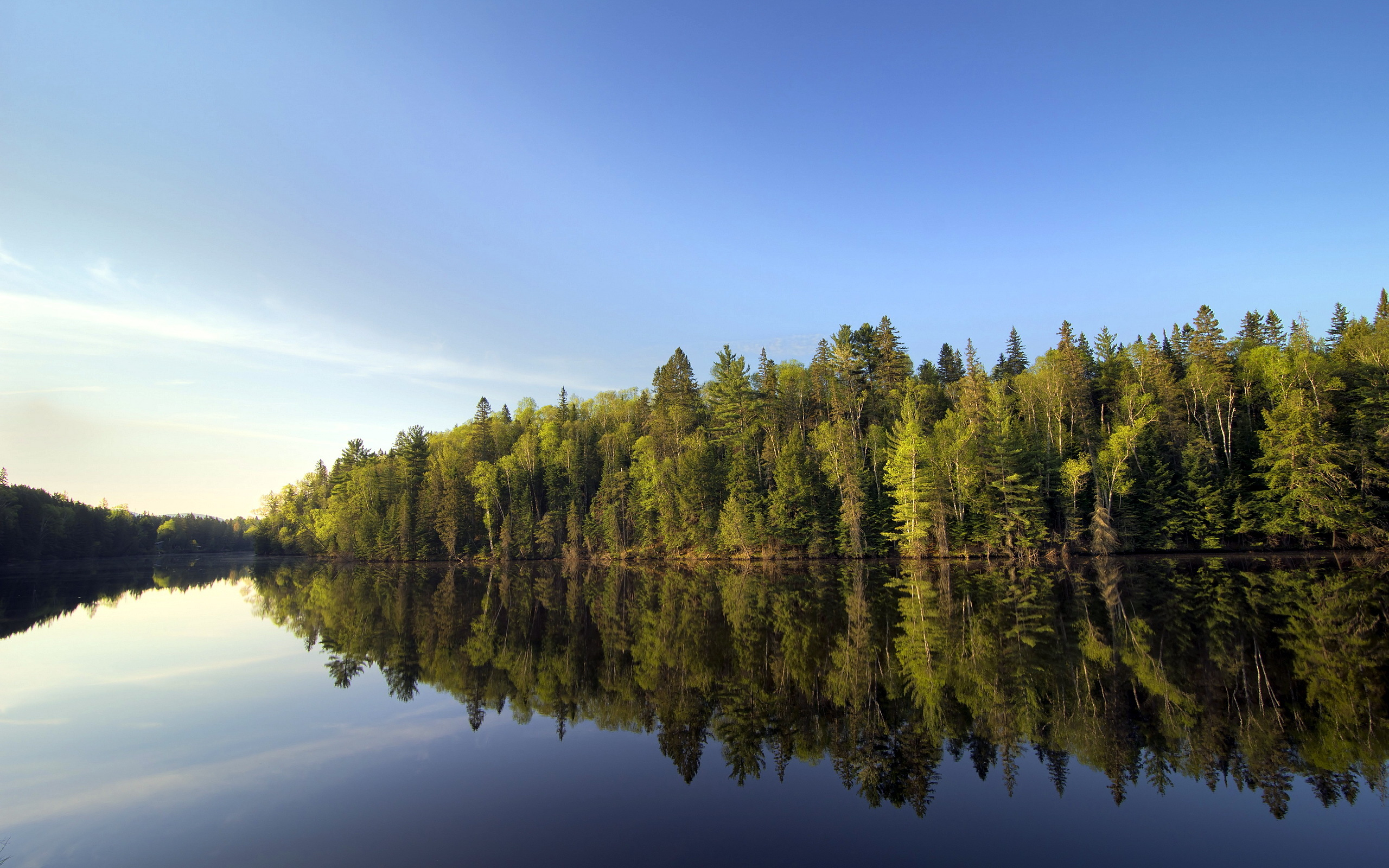 река лес  № 2789190 без смс