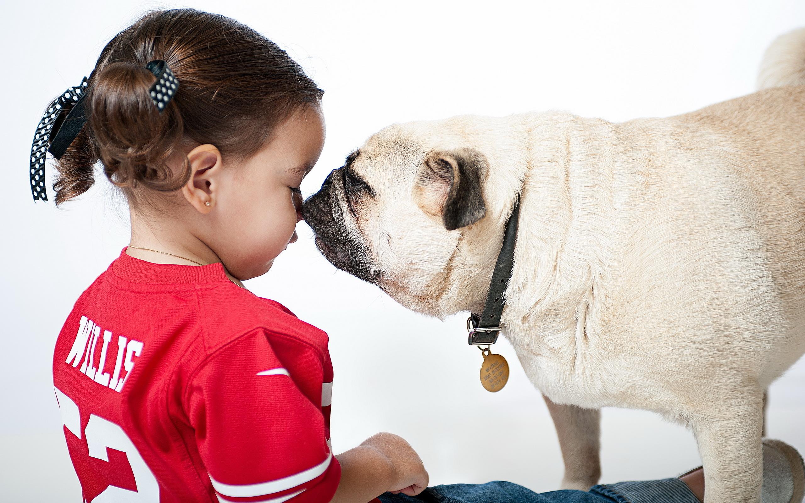 Собака ребенок  № 2980067 загрузить