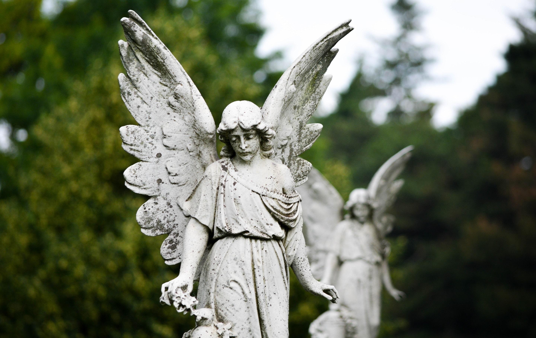 ангелы в городе картинки этих заслуг