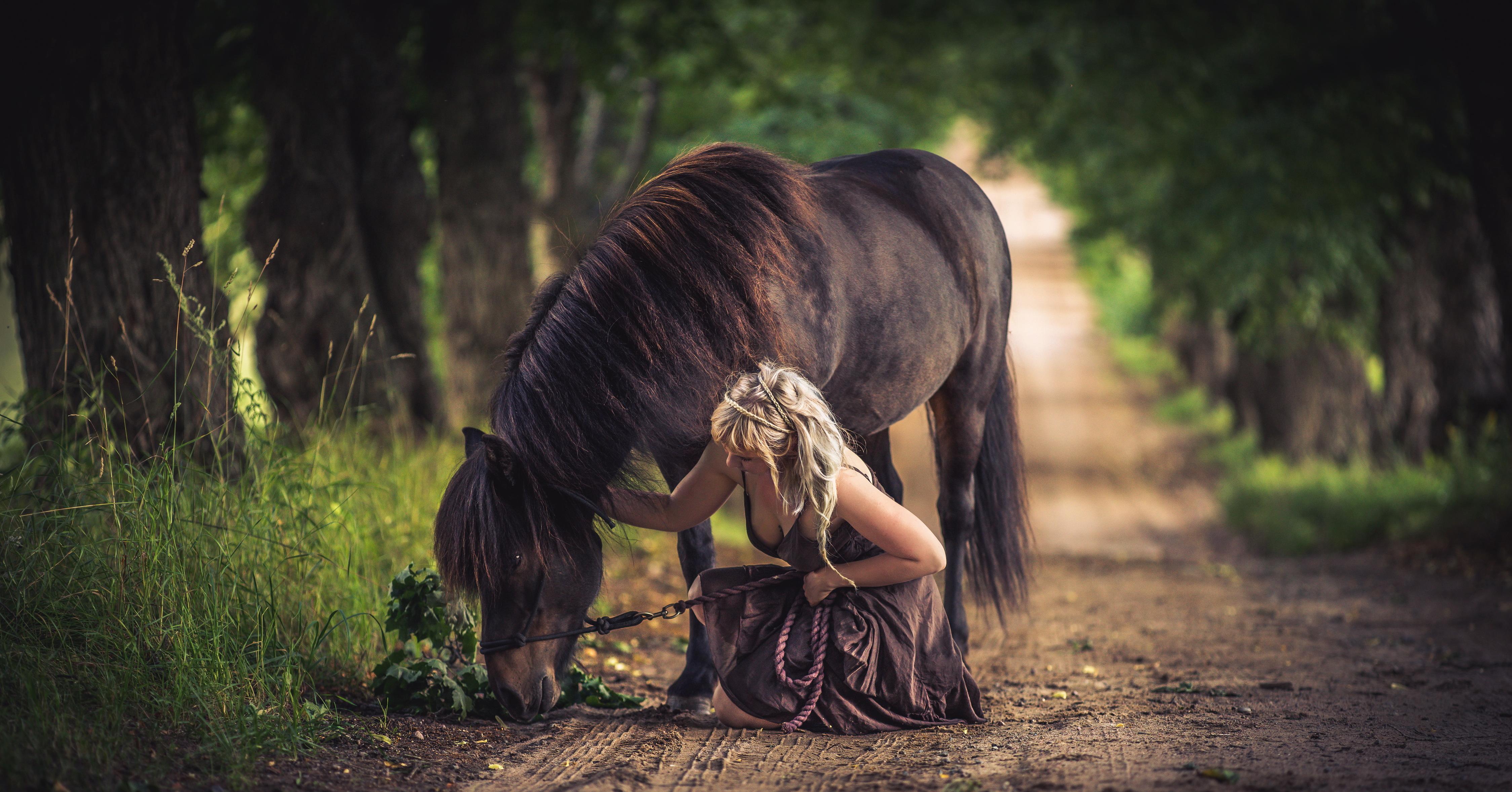 девушка лошади  № 1818980  скачать