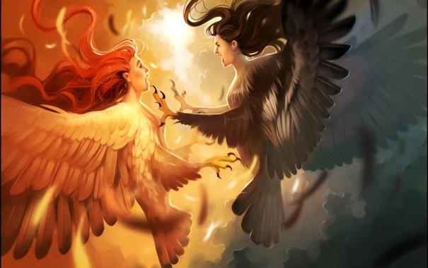 Фото обои птицы, ночь, арт, день, чудовище, миф, гарпия