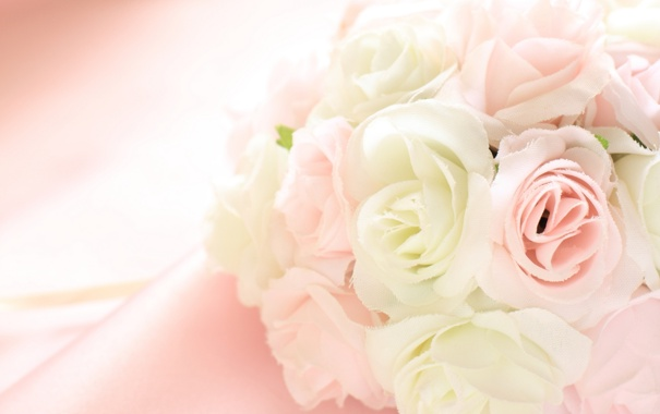 Фото обои цветы, лепестки, ткань, бахрома