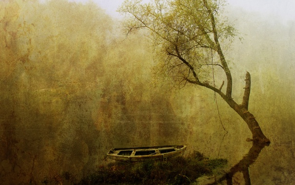 Фото обои вода, туман, дерево, лодка, картина