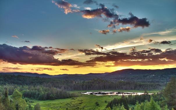 Фото обои лес, лето, небо, солнце, облака, деревья, пейзаж