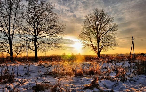 Фото обои зима, небо, солнце, снег, деревья, пейзаж, закат
