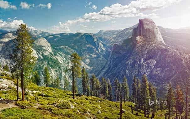 Фото обои снег, деревья, горы, природа, Калифорния, США, Yosemite National Park