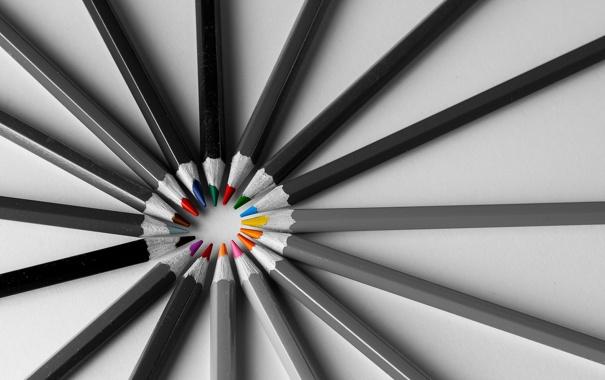 Фото обои макро, фон, карандаши