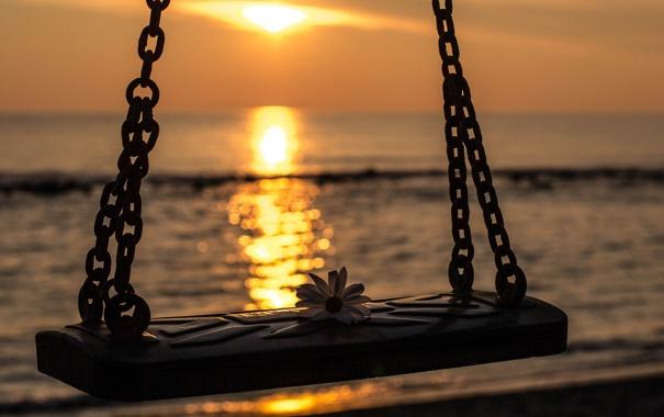 Фото обои море, цветок, закат, качели, вид, вечер, боке