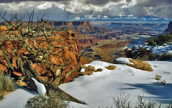 Фото обои снег, деревья, горы, скалы, каньон, Юта, США