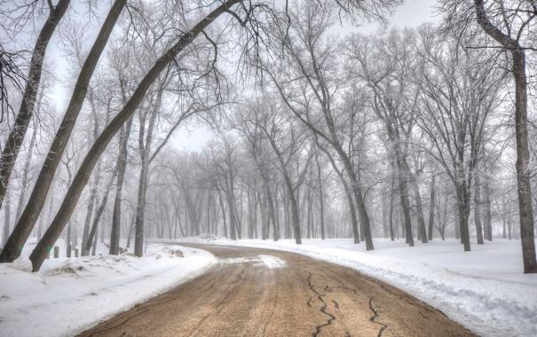 Фото обои зима, дорога, пейзаж