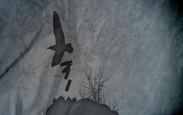 Фото обои фон, птица, обои, ситуация, арт, гнездо, бомбы