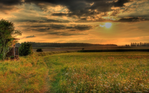 Фото обои небо, трава, природа, фото, HDR, Германия, луга
