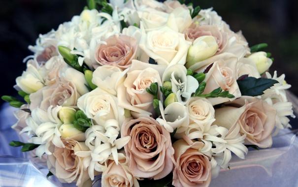Фото обои цветы, розы, букет, композиция, фрезии