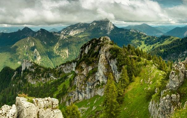 Фото обои зелень, небо, трава, облака, деревья, пейзаж, горы