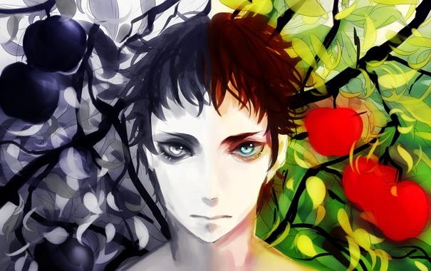 Фото обои взгляд, ветки, лицо, яблоки, парень