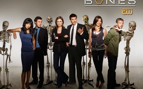 Фото обои кости, сериал, bones