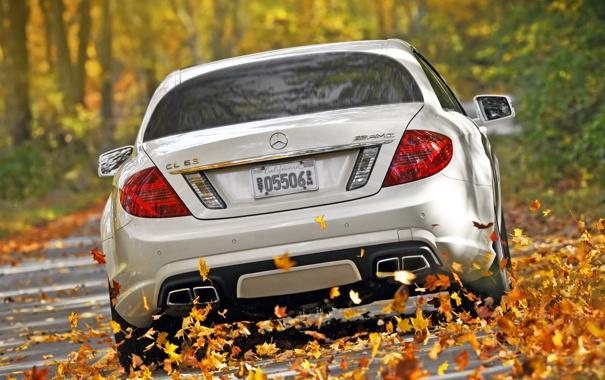 Фото обои осень, белый, листья, деревья, Mercedes-Benz, скорость, суперкар