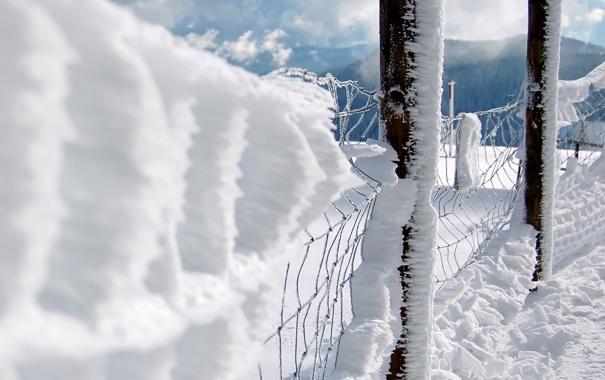 Фото обои столбы, решетка, ограждение, Снежок