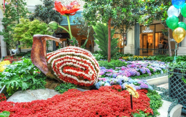 Фото обои цветы, парк, клумба, Park, flowers, flowerbed, цветочная улитка