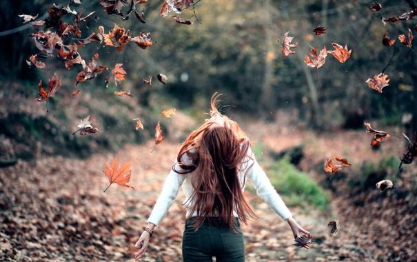 Фото обои осень, листья, девушка, Freedom