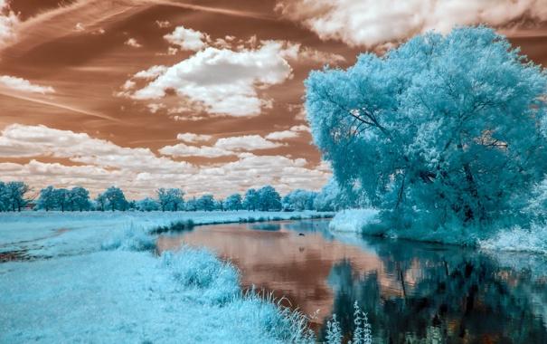 Фото обои лето, пейзаж, река, цвет