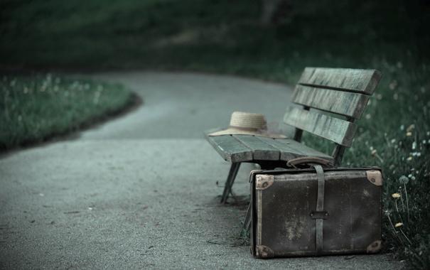 Фото обои чемодан, парк, скамья