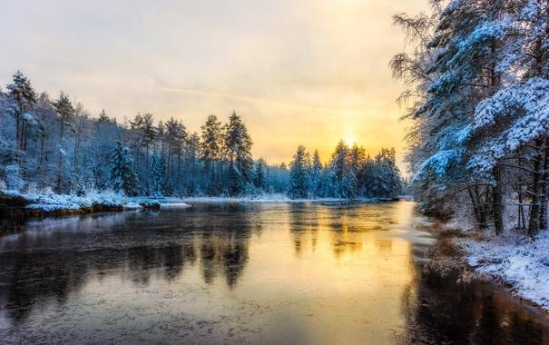 Фото обои зима, река, утро