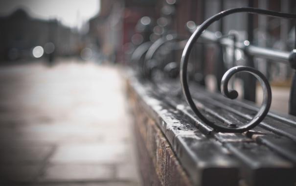 Фото обои макро, улица, скамья