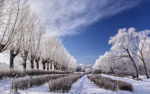 Фото обои park, town, ozersk. ural