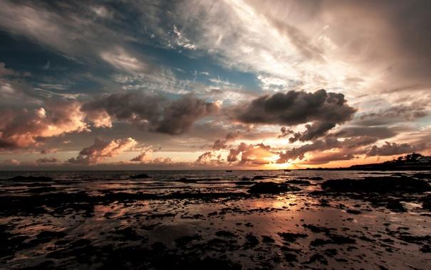 Фото обои море, пляж, закат, отлив