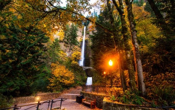 Фото обои лес, деревья, скамейка, мост, парк, водопад, фонарь
