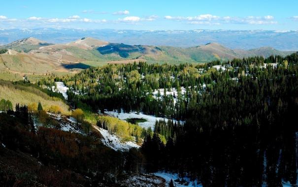 Фото обои небо, снег, деревья, пейзаж, природа, горы. лес