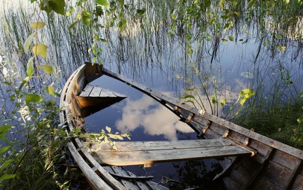 Фото обои трава, вода, ветки, озеро, пруд, дерево, лодка