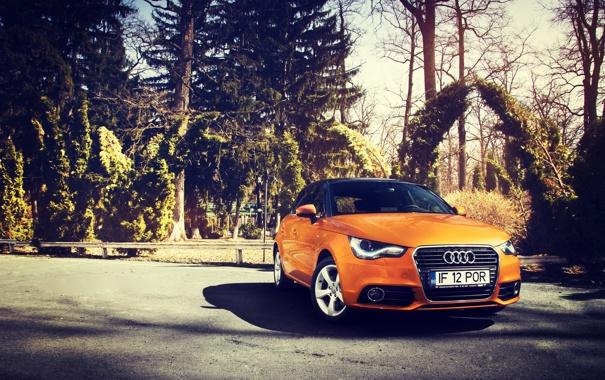 Фото обои Audi, Ауди, Оранжевый, Sportback