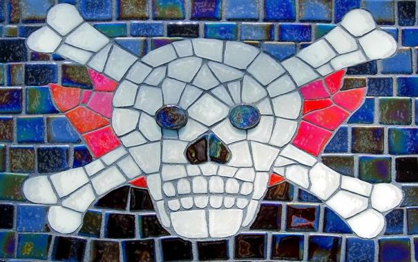 Фото обои кости, мозайка, черепок