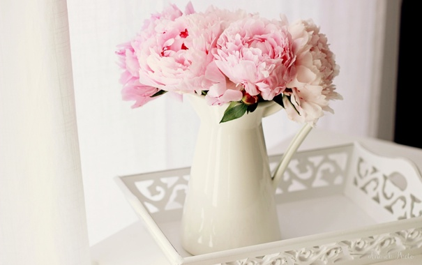 Фото обои ваза, поднос, пионы