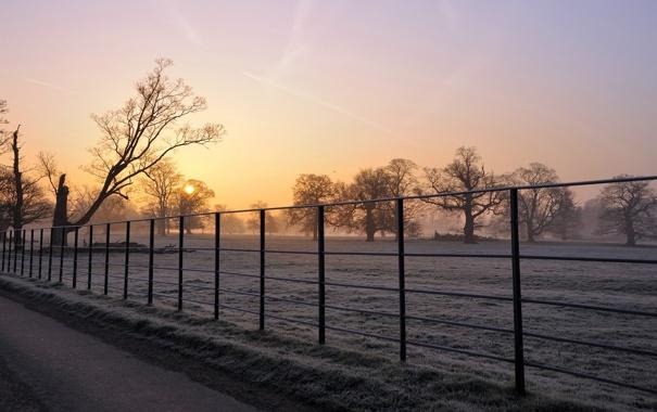 Фото обои поле, пейзаж, туман, забор, утро