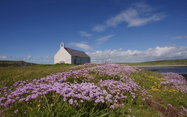 Фото обои поле, небо, облака, цветы, река, церковь