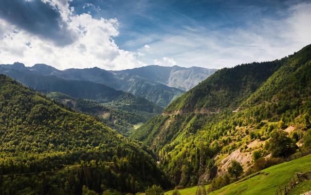 Фото обои лес, деревья, пейзаж, горы, природа, обои, забор
