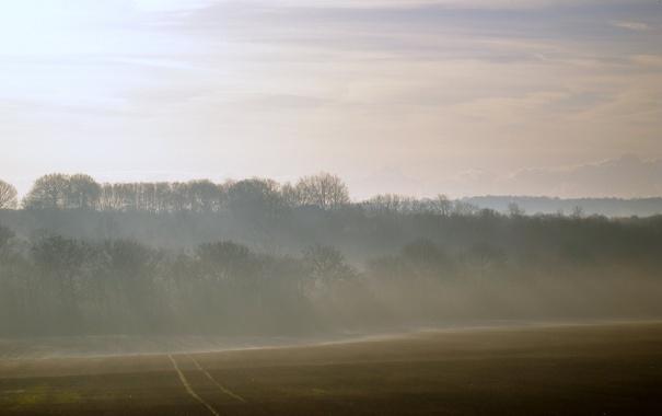 Фото обои дорога, поле, небо, лучи, свет, деревья, природа